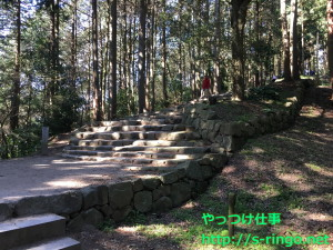 木漏れ日の中の石段