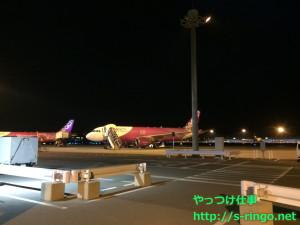 ショッキングピンクの飛行機!