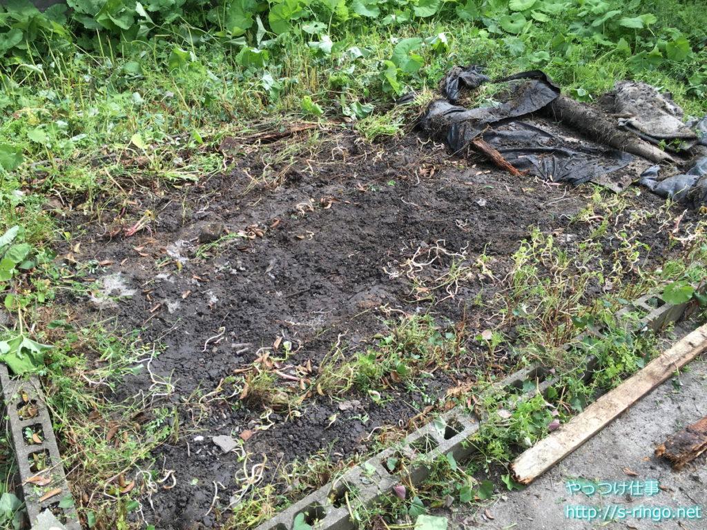 家庭菜園・草刈り中盤