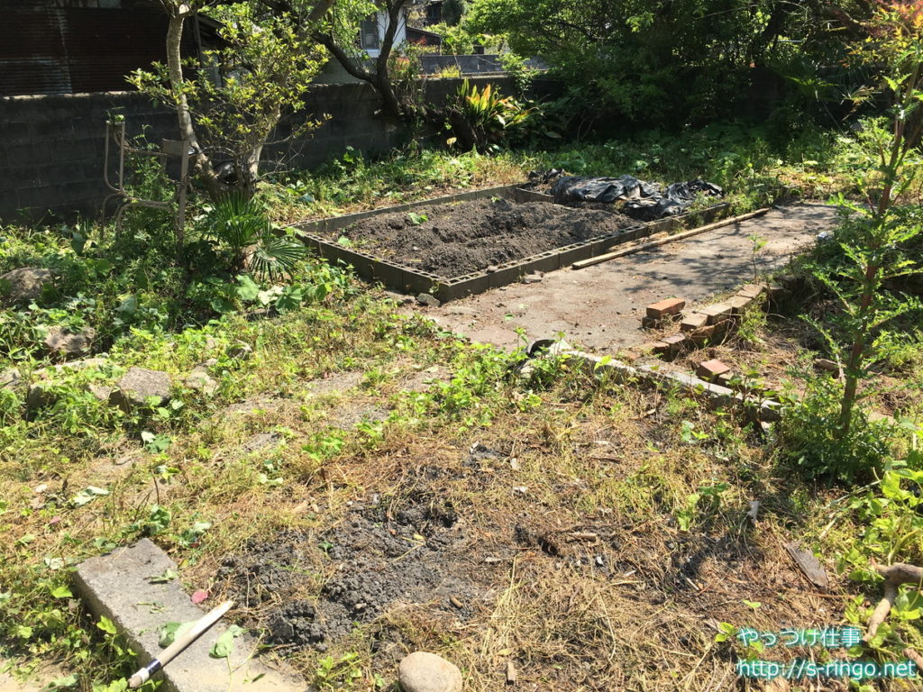 家庭菜園・奥の畑
