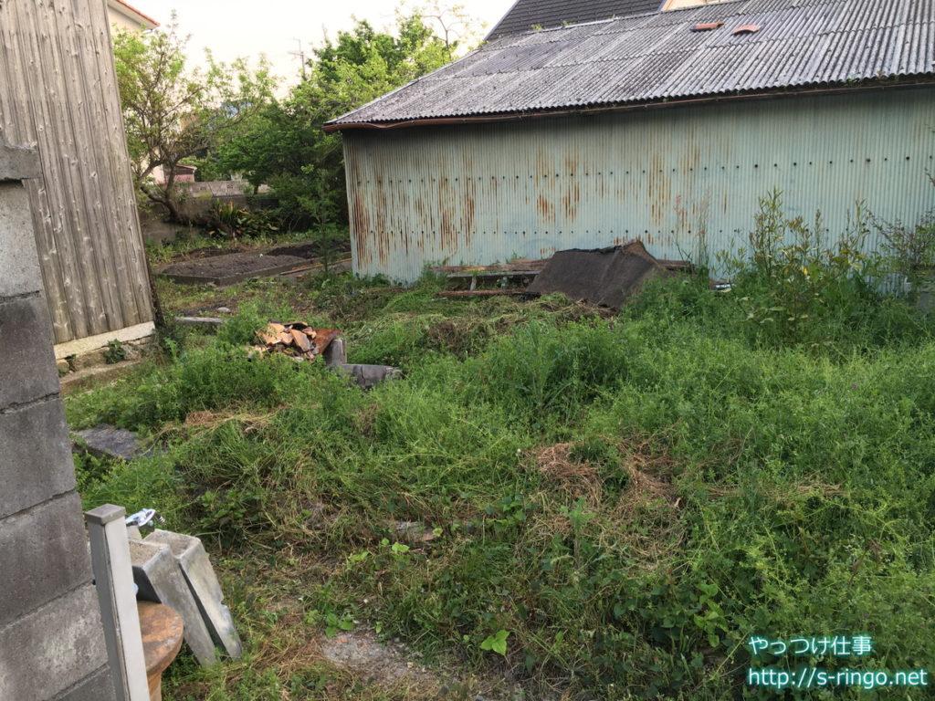 家庭菜園・未作業エリア01